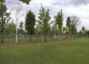 Parcurile din Slatina în atenția Primăriei