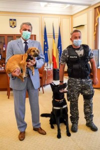 Marcel Vela înființează Poliția Animalelor