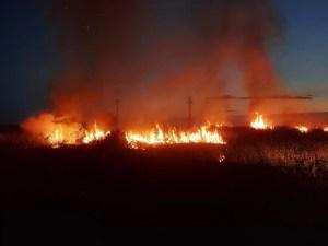 Incendiu puternic de vegetație uscată, în Piatra Olt