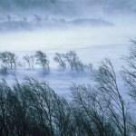 Meteorologii au emis cod galben de intensificări ale vântului în 15 judeţe