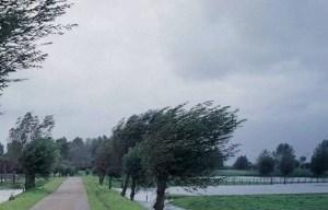 Cod portocaliu de furtuni în Oltenia
