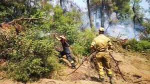Pompierii români care au ajutat la stingerea incendiilor din Grecia, înaintaţi în grad la revenirea în țară