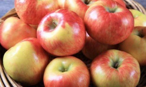 Konsumoni 2 mollë në ditë, ja çfarë do të ndodhë me organizmin