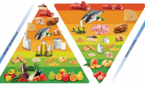 Ushqimet që ndikojnë në sistemin imunitar