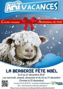 rambouillet_bn_marche-noel_2014-12