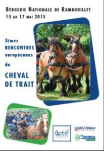 rambouillet_festival_cheval-trait_2015-05