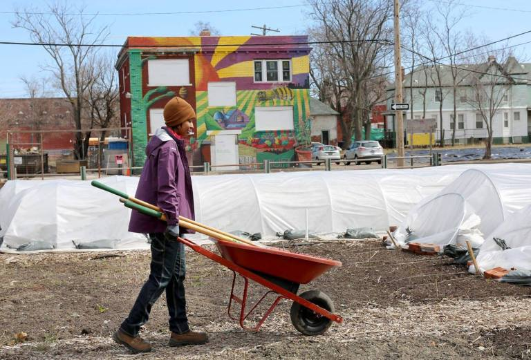 A resident of Detroit working in a community garden.