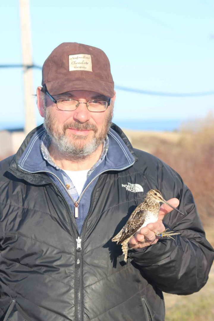 Dr. Edward (Ted) Miller holding a Wilson's snipe.