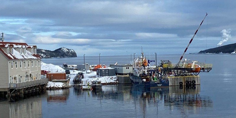A number of vessels are tied up at a wharf with the Marine Institute's Holyrood Marine Base visible to the left.