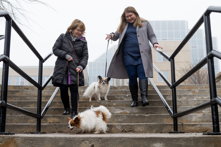 Drs. Walsh and Ryan on steps on the St. John's campus with two small dogs
