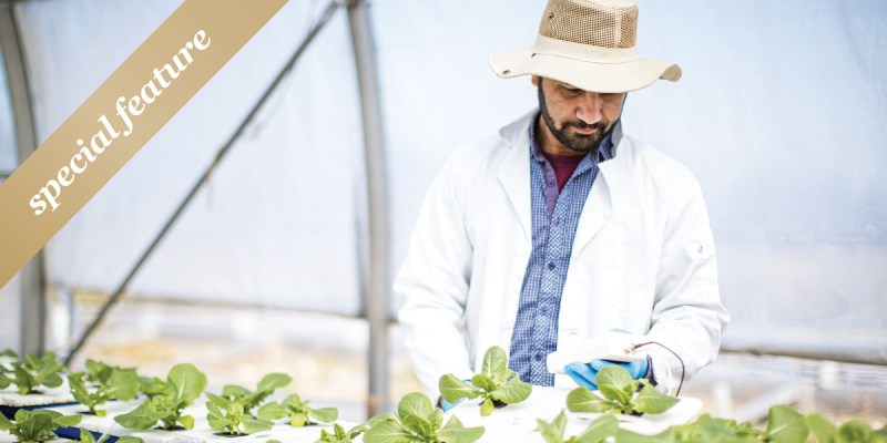 """A man with a straw hat and lab coat tends plants in a green house. A gold sash with """"special feature"""" in it is in the upper left hand corner."""