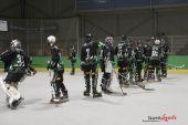 Green Falcons vs Reims (Reynald Valleron) (1)
