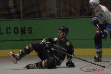 Green Falcons vs Reims (Reynald Valleron) (14)