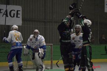 Green Falcons vs Reims (Reynald Valleron) (8)