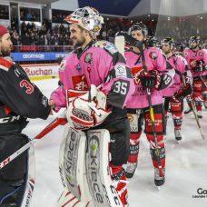 hockey-sur-glace-les-gothiques-amiens-vs-mulhouse-1147-leandre-leber-gazettesports-1017x678