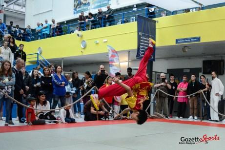 Démonstration du centre Kung-Fu Wushu Techniques Douces.