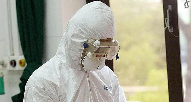 Mısır, korona virüsü taşımayanlara belge veriyor