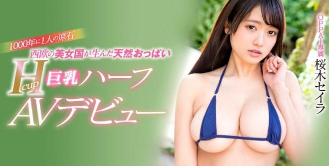 sakuragi_seira