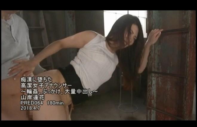 山岸逢花 (67)
