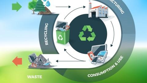 Economía circular: apuesta por el medio ambiente y oportunidad de negocio