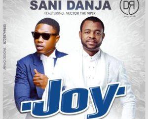 Sani Danja Ft. Vector – Joy