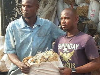 NDLEA intercepts 7,073 kg of Cannabis valued at N70.7 million, concealed in building materials