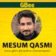 Mesum Qasmi
