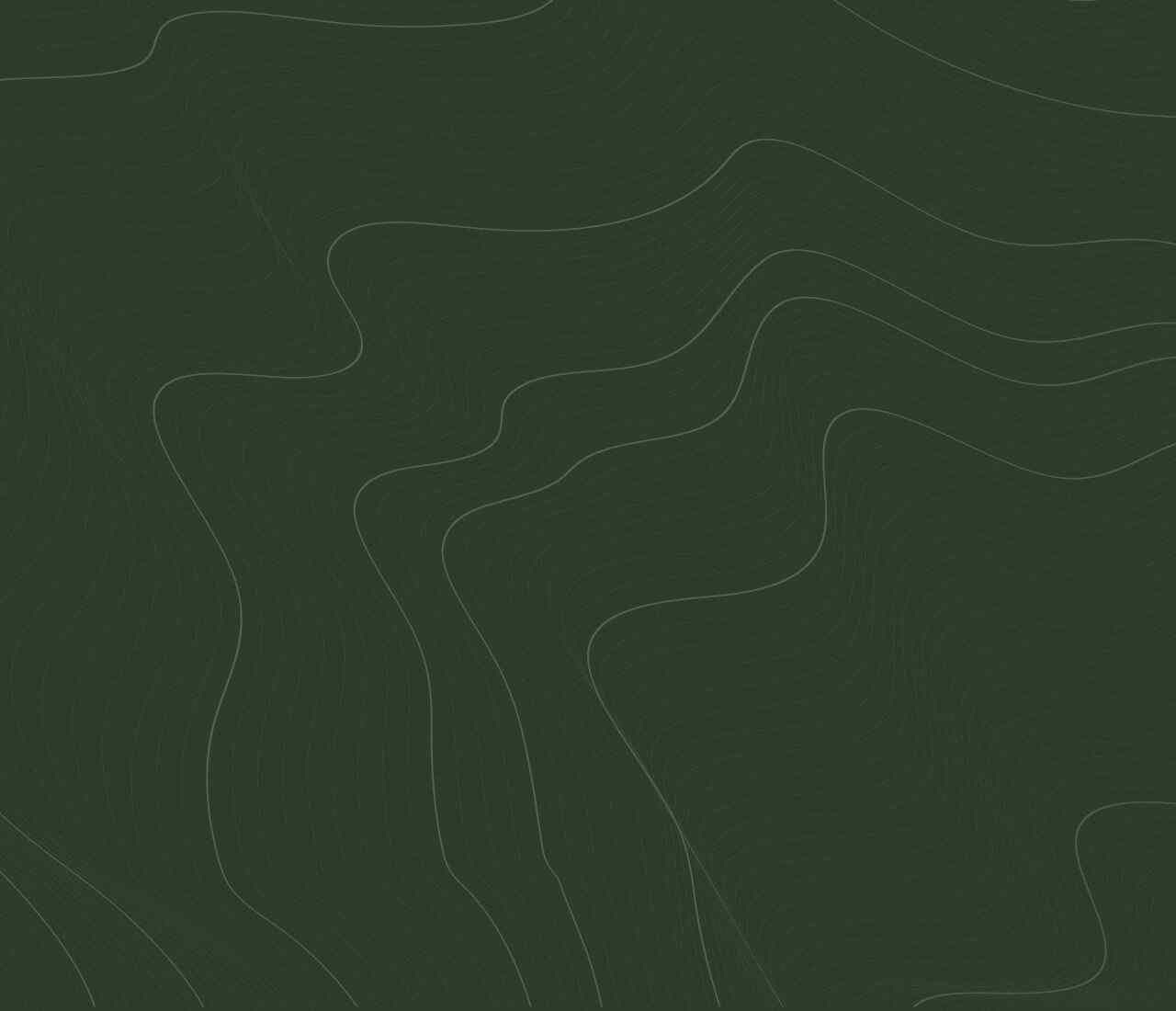 https://i2.wp.com/gbh.mx/wp-content/uploads/2020/02/green-background.jpg?resize=1280%2C1100&ssl=1