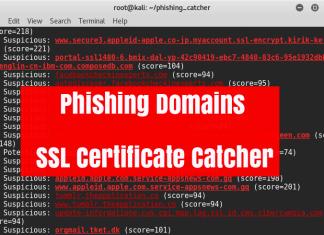 Malicious Phishing Domain