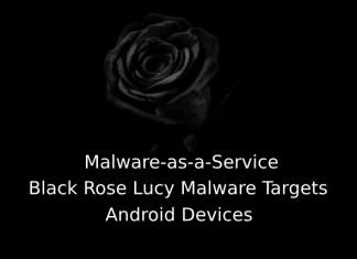 Black Rose Lucy