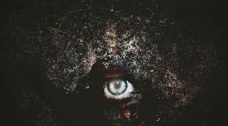 Album Review: Cry Excess – Vision (Bleeding Nose Records)