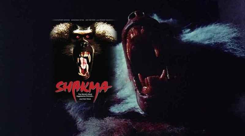 Shakma 1