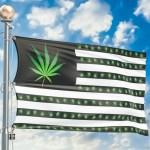 legalized marijuana 2020 election