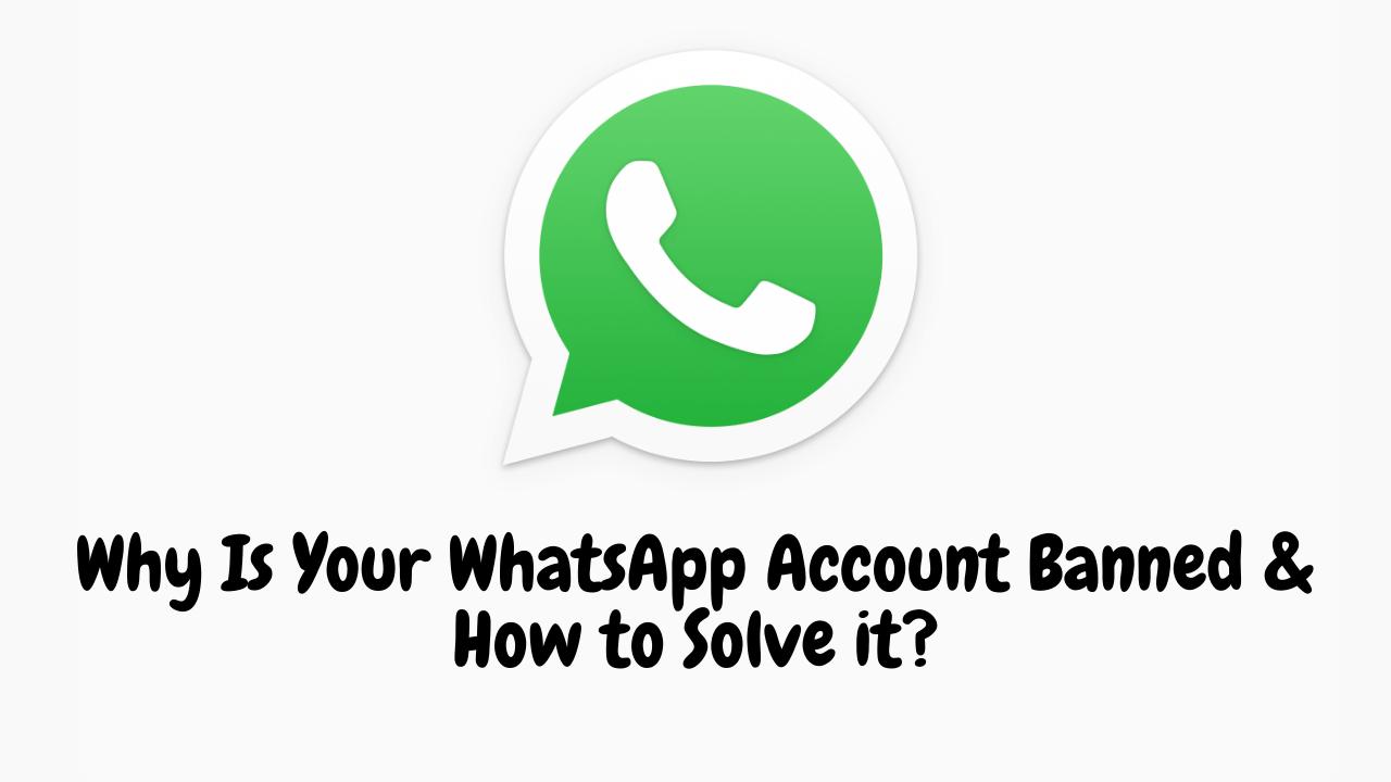 WhatsApp Account Banned