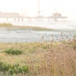 Walk on the Beach in Galveston