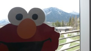 ELMO in Banff