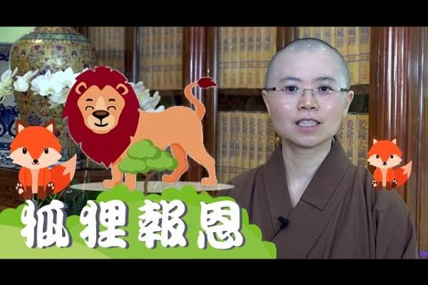 佛陀的本生故事   狐狸報恩