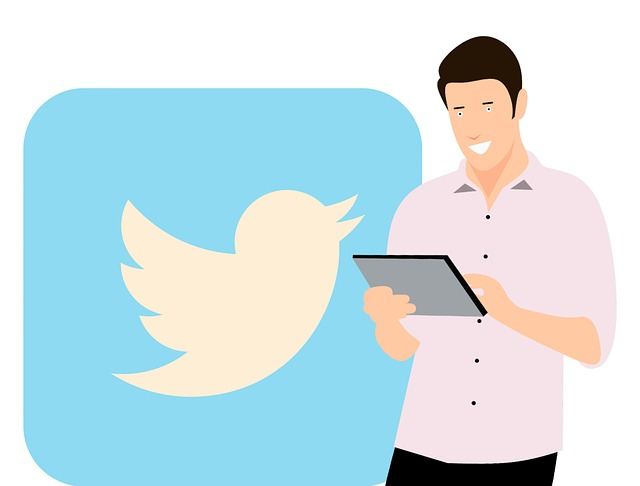 Top 5 Best Twitter Downloaders