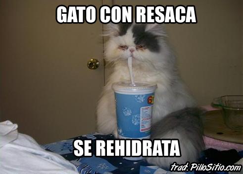 Saquen Las Caguamas Para La Cruda Memes De Alcohol Facebook