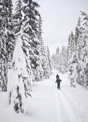 Snowshoeing in to Bechtel Shelter