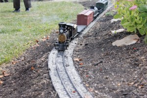 Dan Stenger's 20.3 ET&WNC train pulled by an Accucraft live steam mogul,