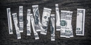 image of a cut-up dollar bill