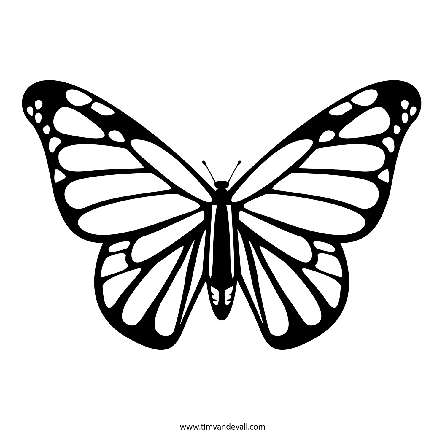 Butterfly Black And White Monarch Butterfly Clipart Black
