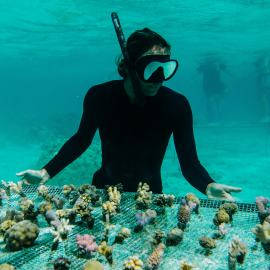 Léa Brassy attends the coral planting demonstration by Dr Austin Kerby and the Coral Gardeners