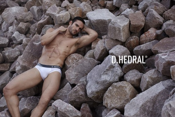 dhedral-02