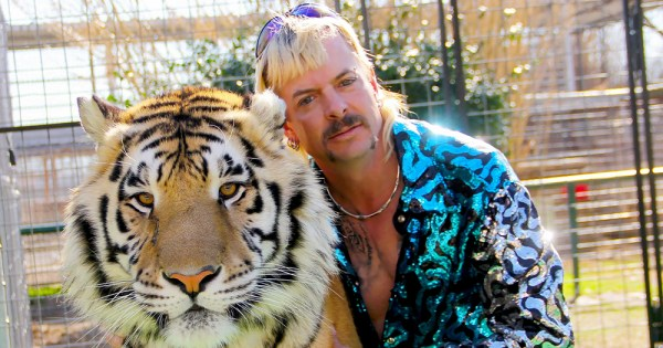 A flamboyantly dressed man with bleached hair and a moustache embraces a tiger inside a cage