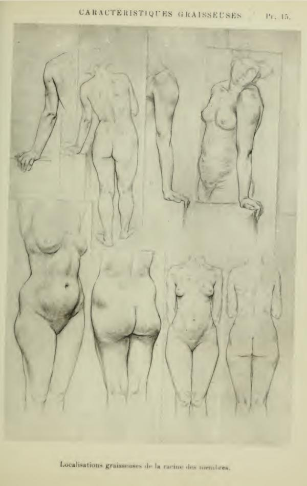 anatomia-humana-femenina-cuerpo-femenino