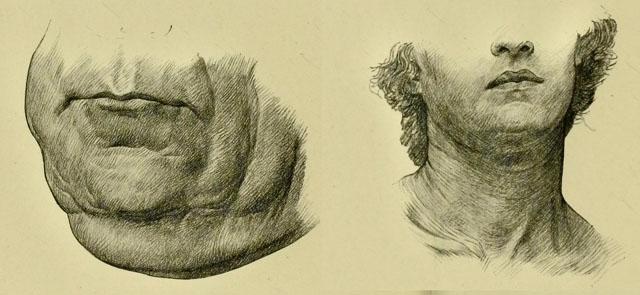 anatomia-humana-para-artistas-detalles-de-marcas-en-el-cuello