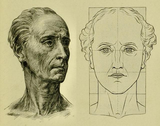 anatomia-humana-para-artistas-proporciones-del-cuello-con-la-cabeza